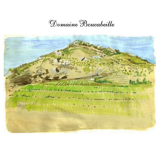 Domaine Boucabeille   Les Orris vin rouge 2014