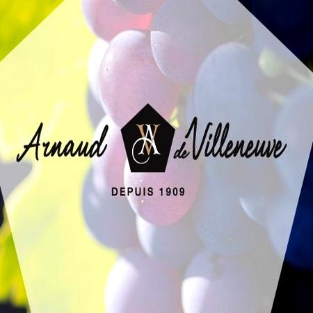 Cave Arnaud de Villeneuve | Vin nouveau Merlot / Syrah 2017