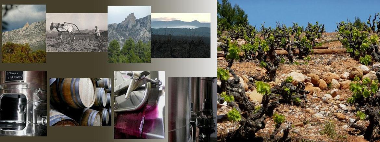 domaine de la Toupie vin du roussillon