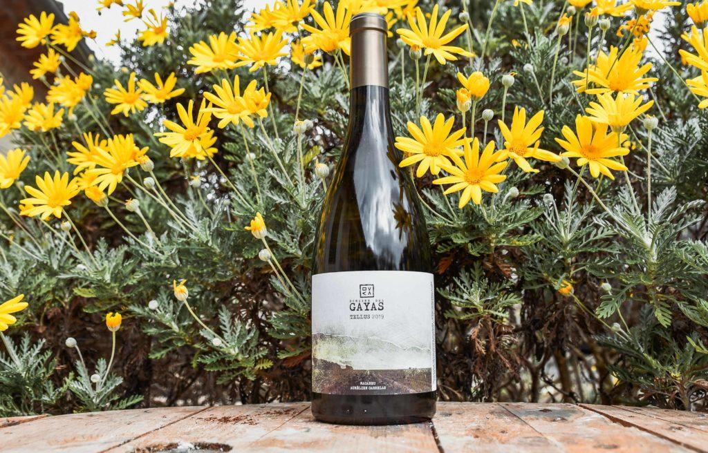 Tellus 2019 - Blanc - Domaine des Gayas